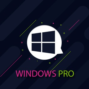 WINDOWS HOSTING PRO